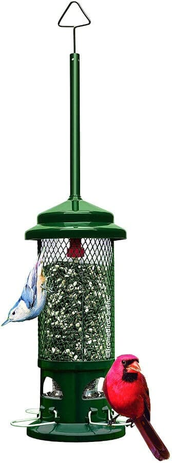 Brome Squirrel Buster Standard Squirrel Proof Feeder