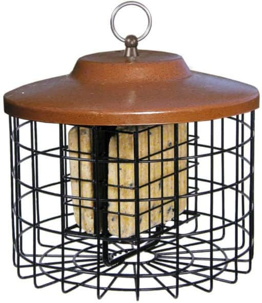 Stokes Select Double Suet Squirrel Proof Bird Feeder