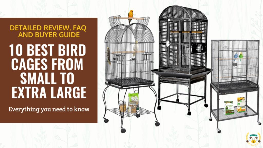 10 Best Bird Cages, Parakeet, Cockatiel, African Grey