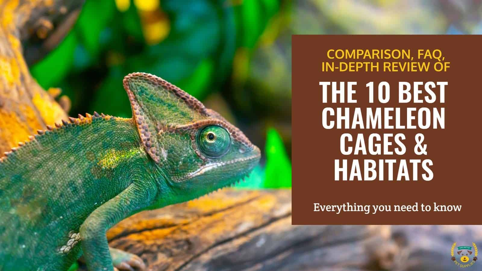 Top 10 Best Chameleon Cages 2021 Reviews