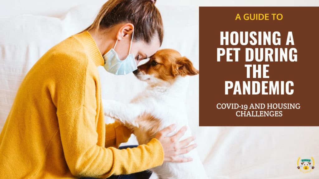 A Guide to Housing a Pet During the Pandemic