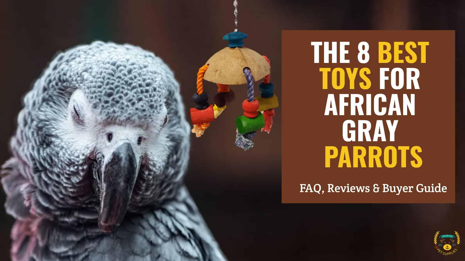 Best toys for African gray parrots